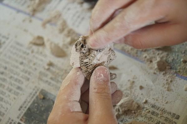 セリア「化石恐竜」